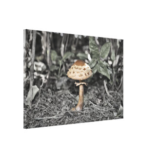 Wild Mushroom (Toadstool) Canvas Print