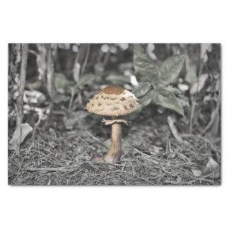 Wild Mushroom (Toadstool) Tissue Paper