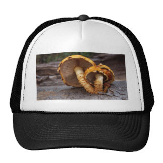 Wild Mushrooms Trucker Hat