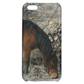 Wild Mustang Horse in the Snow 1 Cover For iPhone 5C