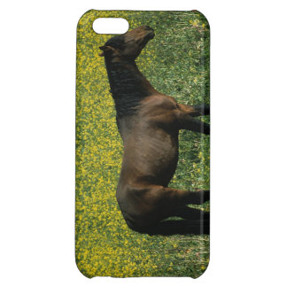 Wild Mustang Horse Standing in Flowers Cover For iPhone 5C