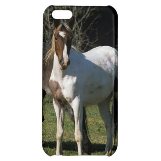 Wild Mustang Horses 1 iPhone 5C Cover