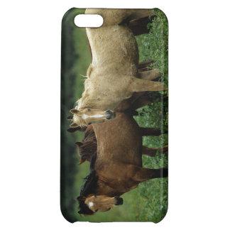 Wild Mustang Horses 4 iPhone 5C Cases