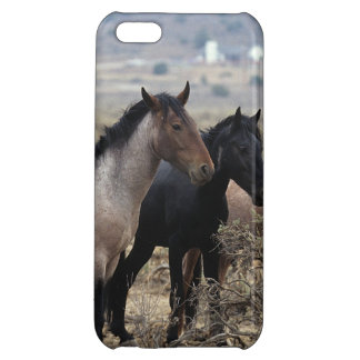 Wild Mustang Horses 5 iPhone 5C Cover