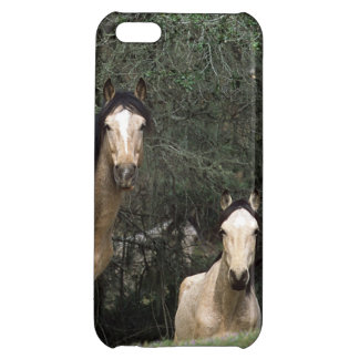 Wild Mustang Horses 6 iPhone 5C Cover