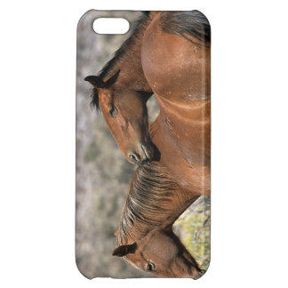 Wild Mustang Horses Touching Case For iPhone 5C