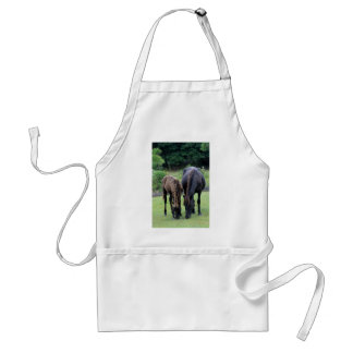 Wild Mustang Mare & Foal OBX NC Standard Apron