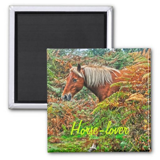Wild New Forest Pony Horse-lover's Gift Refrigerator Magnets