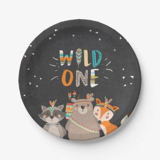 Wild One Tribal Woodland birthday Paper Plates