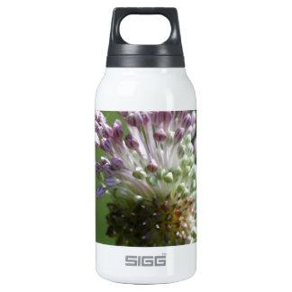 Wild Onion Wildflower Crow Garlic - Allium vineale Insulated Water Bottle