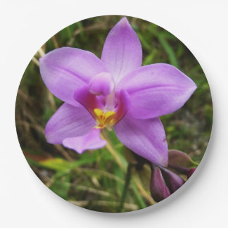 Wild Orchid Purple Tropical Flower 9 Inch Paper Plate