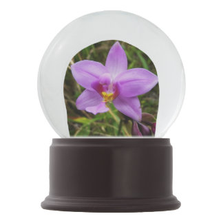 Wild Orchid Purple Tropical Flower Snow Globe