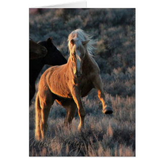 Wild Palomino Stallion Note Cards