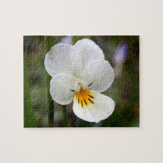 Wild Pansy Photo Puzzle with Gift Box