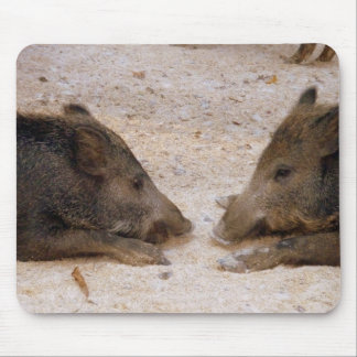 Wild pigs - game Hog Mouse Pad