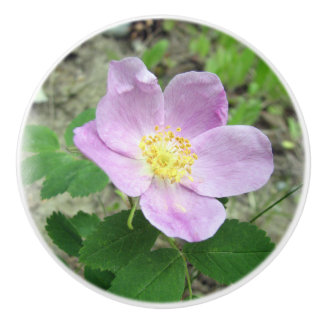 Wild Pink Rose Ceramic Knob