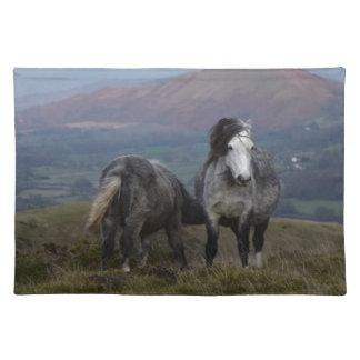 Wild Ponies Placemat