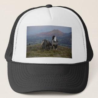Wild Ponies Trucker Hat