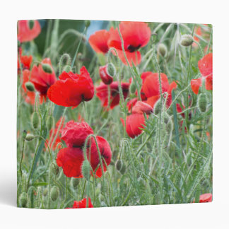Wild poppies 3 ring binder