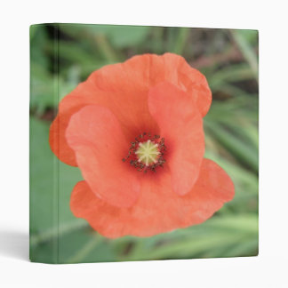 Wild Poppy Flower Photograph Album Binder