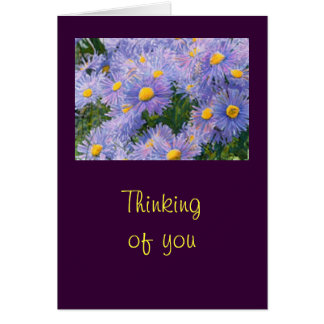 "Wild Purple Asters ""Thinking of You"" Greeting Card"