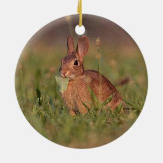 Wild Rabbit Ceramic Ornament