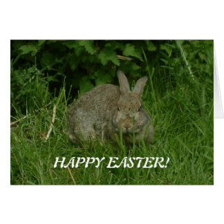 Wild Rabbit | HAPPY EASTER! Greeting Card