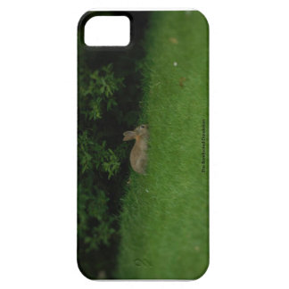 Wild Rabbit - Phone Case