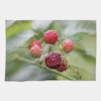 Wild Raspberries Kitchen Towel