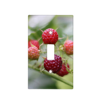 Wild Raspberries Light Switch Cover