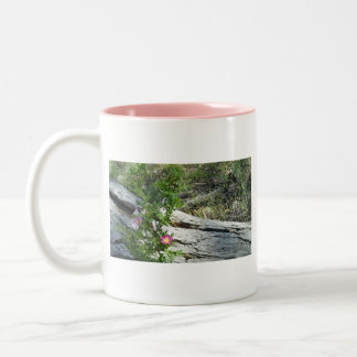Wild Roses Two-Tone Coffee Mug