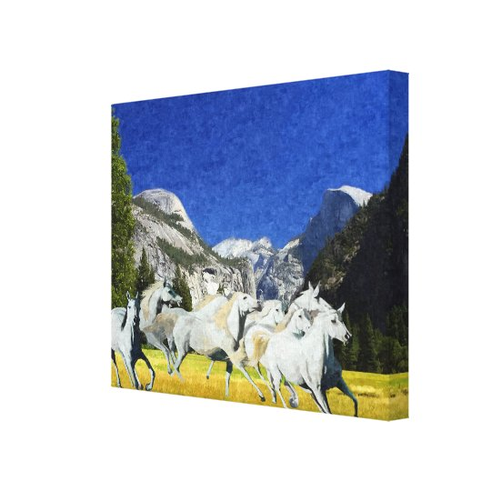 Wild Running Horses Yosmite National Park Canvas