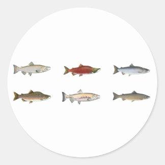 Wild Salmon Classic Round Sticker