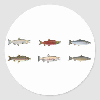Wild Salmon Round Sticker