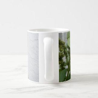 Wild Spinach Classic White Mug
