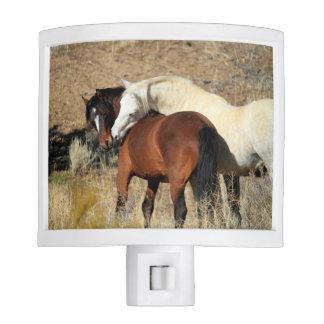 Wild Stallion & Mare Tender Moment Night Light
