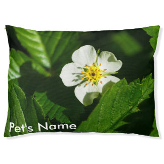 Wild Strawberry Flower Pet Bed