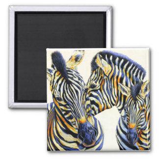 Wild Things - Zebra Magnet
