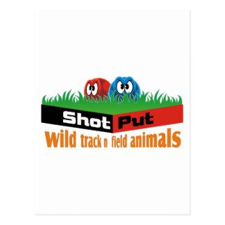 Wild track and field animals postcard