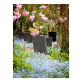 Wild tranquility, beautiful churchyard. Hopwas UK Postcard