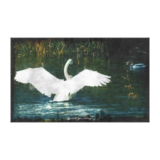 Wild Trumpeter Swan Motivational Art Canvas Print