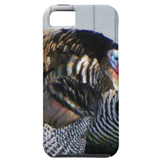 wild turkey case for the iPhone 5