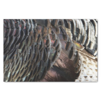 Wild Turkey Feathers I Abstract Nature Design Tissue Paper