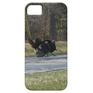 Wild Turkey iPhone Barely There Case. iPhone 5 Cover