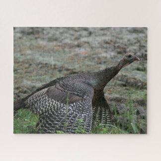 Wild Turkey, Photo Puzzle. Jigsaw Puzzle