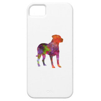 Wild Uruguayan in watercolor iPhone 5 Case