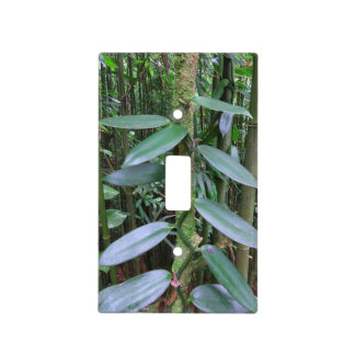 Wild Vanilla Orchid Light Switch Cover
