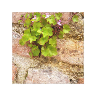 Wild violets canvas wall hanging