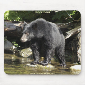 WILD WARRIORS Black Bear Photo Collection Mouse Pad