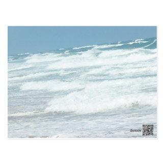 WILD WAVES OF DELRAY BEACH POSTCARD